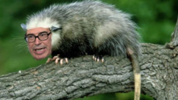 MnuchinPossum