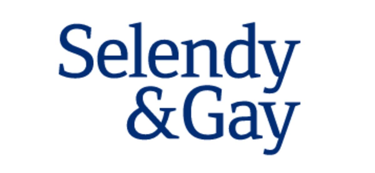 selendy-gay-logo