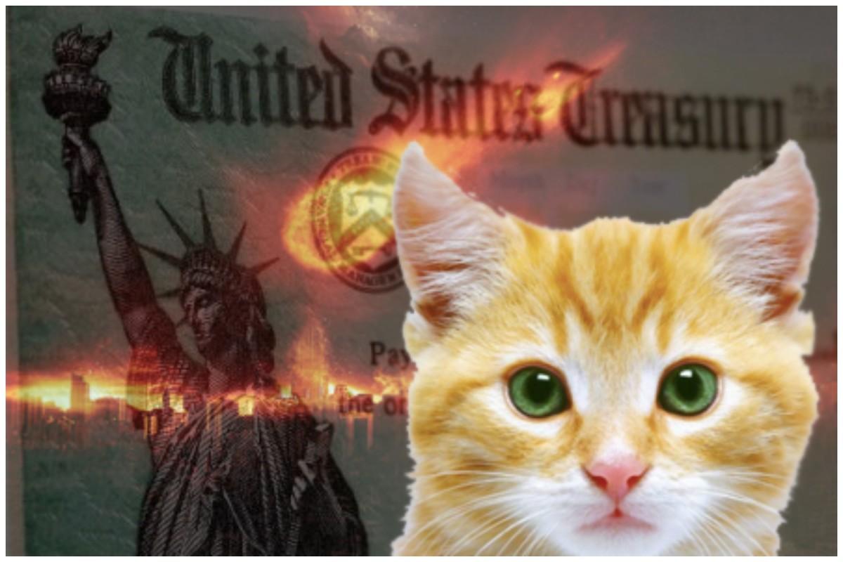 CAT.bonds