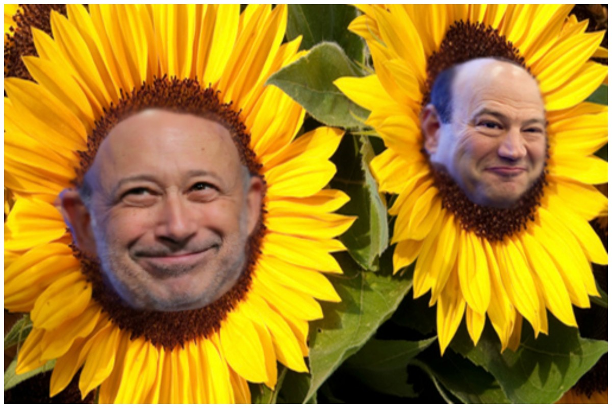 BlankfeinCohnSunflower